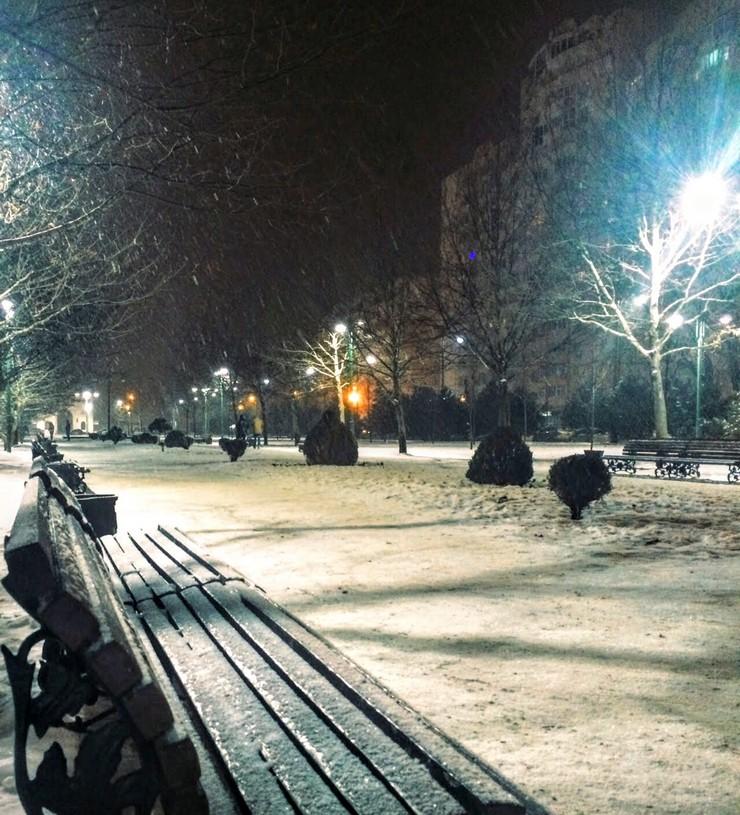 Платановый Бульвар. Вечер