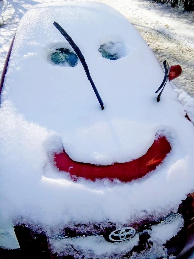 Зимняя автоулыбка