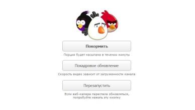 Кормление птичек в браузере